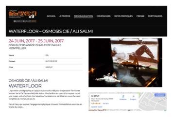 WEBOKBILAN REVIEW 2017Osmosis Cie Ali Salmi_Page_070